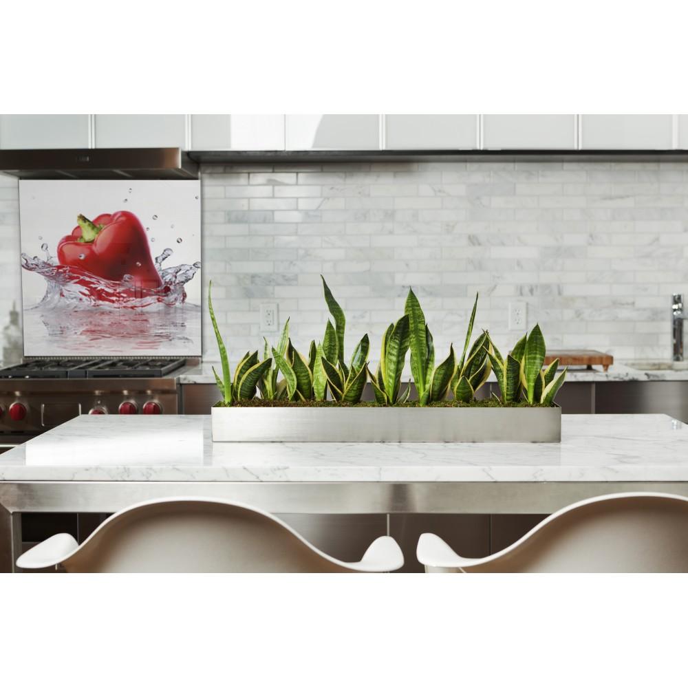 Fond de hotte blanc poivron rouge verre alu credence for Credence fond de hotte cuisine