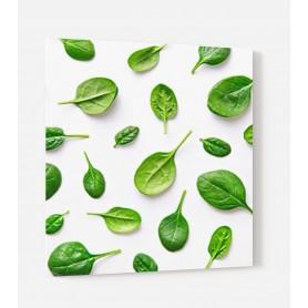 Fond de hotte blanc avec feuilles épinard vertes