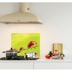 Crédence de cuisine verte avec trois coccinelles