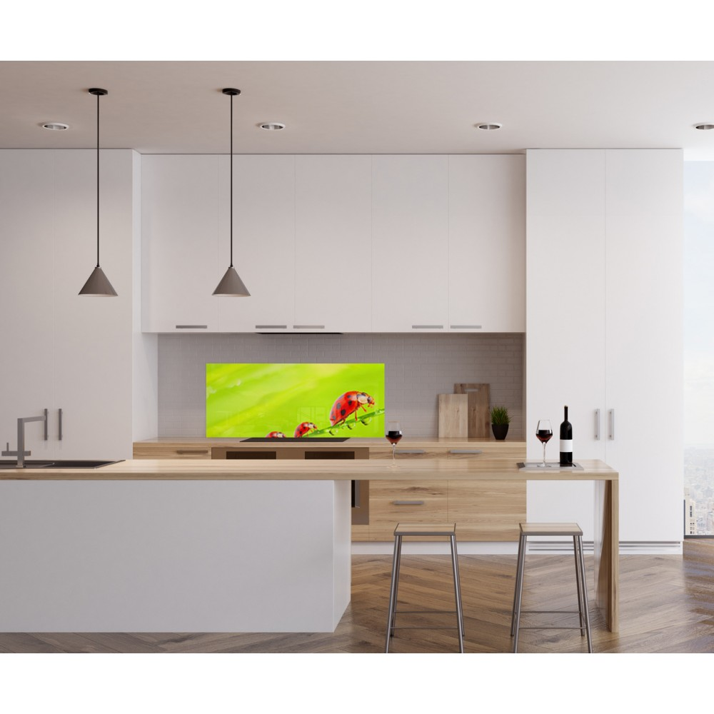 credence plexiglas trendy emejing with credence plexiglas. Black Bedroom Furniture Sets. Home Design Ideas