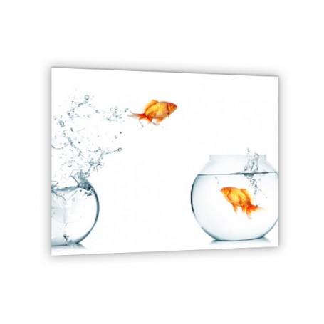 Crédence de cuisine blanche poissons rouges dans deux bocaux