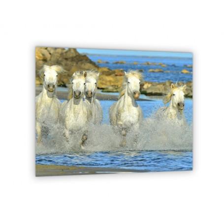 Crédence de cuisine chevaux au galop au bord de mer