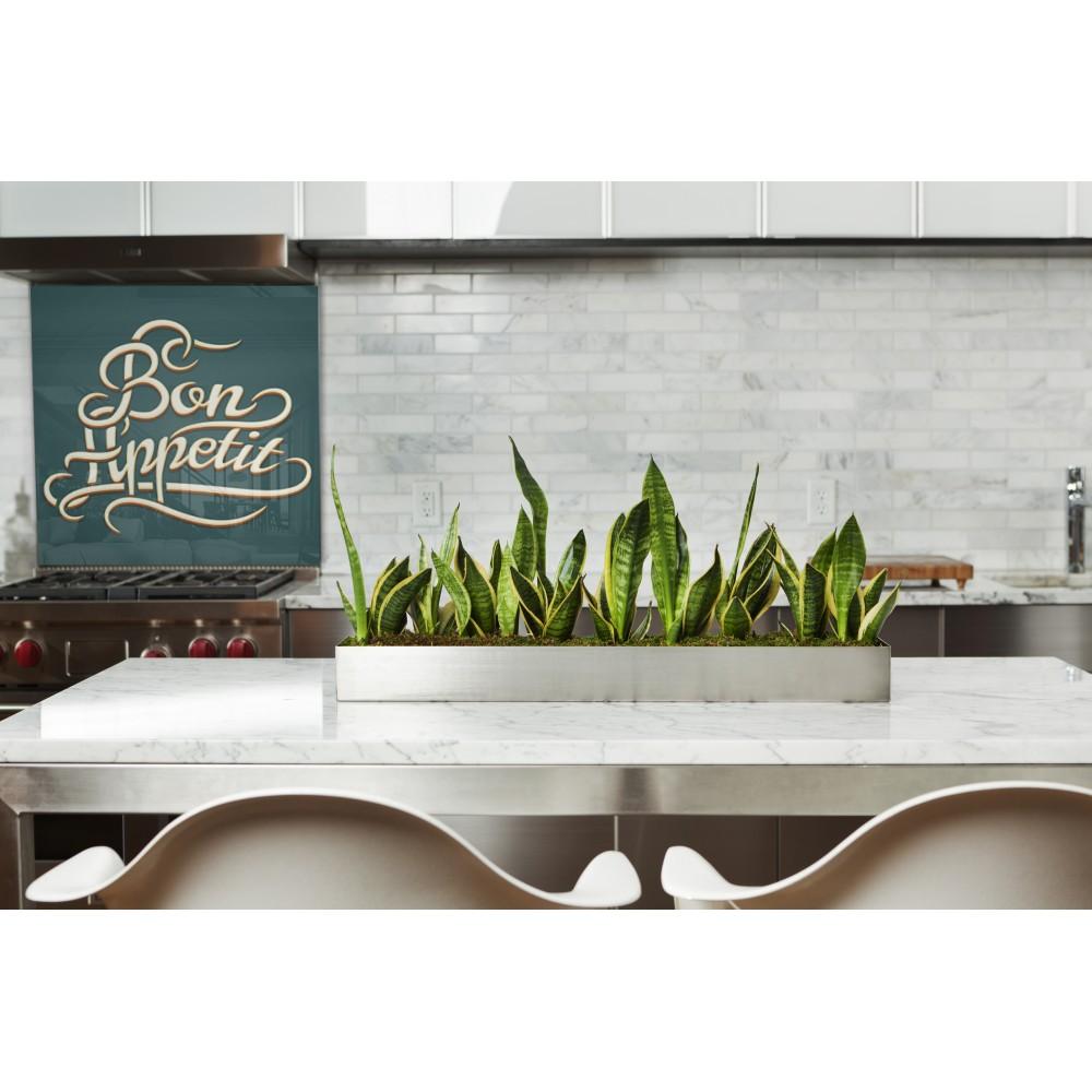 Acheter fond de hotte vert cr dence de cuisine pr t - Credence cuisine fantaisie ...