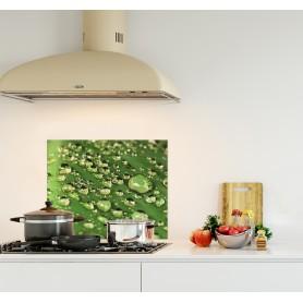 Crédence de cuisine avec gouttes d'eau sur feuille verte