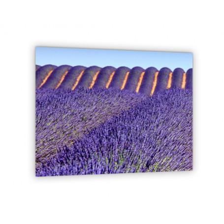 Crédence de cuisine avec champ de lavande violet